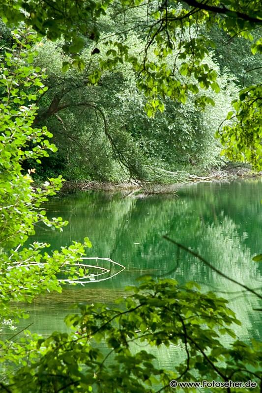 Fotos incl. Panoramafoto vom Erlachsee im Karlsruher Oberwald