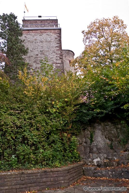 Karlsruhe | Fotoseher: Reisetipps, Naturbilder, Tierfotos ...
